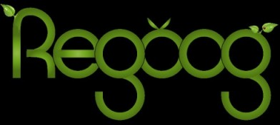 Regoog logo - energy saving search